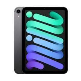 iPad mini (2021) 256 GB wi-fi (space gray)