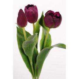 Tulipan 36 cm mix mørk lilla