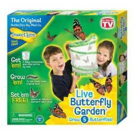 Insect Lore - Butterfly Garden